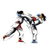 karate action 4